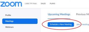 Image of Schedule a New Meeting button